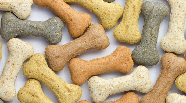 biscotti-cani-2