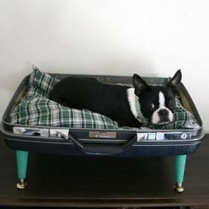 cuccia-per-cani-3