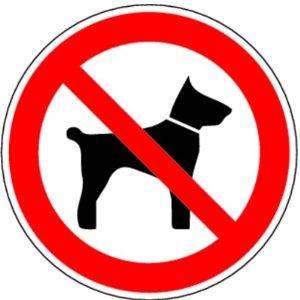 Vietare l'ingresso ai cani nei locali pubblici e quindi negli esercizi commerciali è illegale